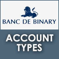 Banc De Binary Account Types Review