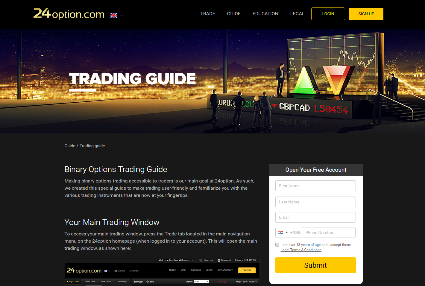 Binary options watchdog virtnext