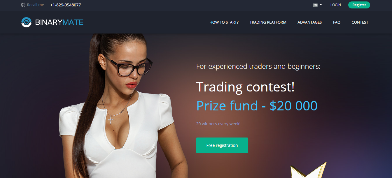 BinaryMate Contest