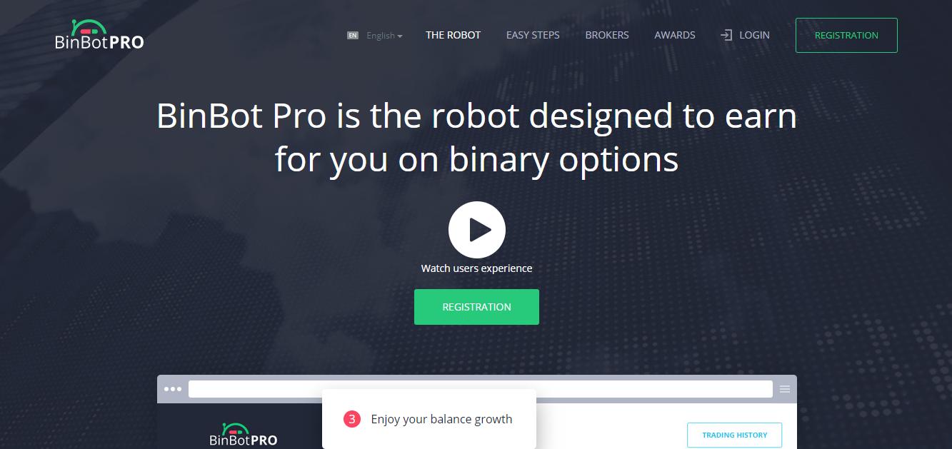 BinBit Pro Home Page